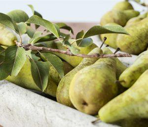 Food CGI Fruit Advertising
